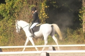 Jordyn Dunson riding Genevia Bay to a 1st place finish in her first show at Harvest Moon Dressage 2015 at training level.