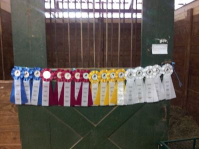 Raleigh Summer Dressage II 2013