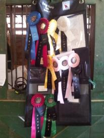 2 of 3 days at the Capital Dressage Classic 2013