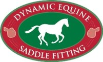 dynamicequinesaddlefitting