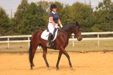 Jennifer Fales riding Poetry In Motion at Heather Ridge Dressage Show to a 2nd place in their first show together in 2015