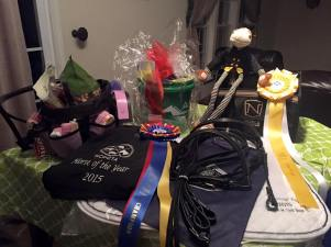 NCDCTA Horse of the Year 2015