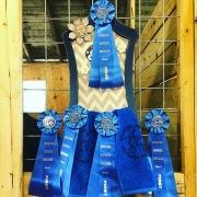 Pinehurst Fall Dressage 2015